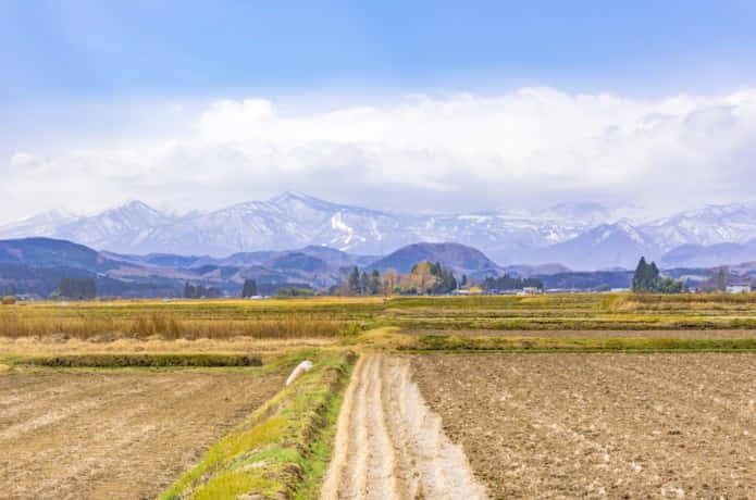 寿司米に最適なササニシキの今。生産農家減少の背景と後継 ...