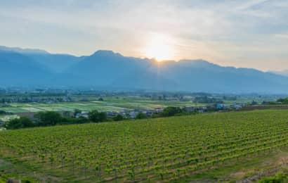 日本アルプスワインバレー