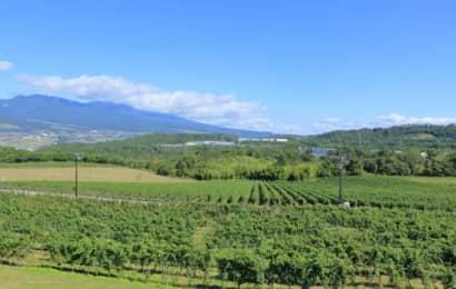 千曲川ワインバレー