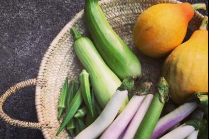 ファーム・ベジコ|高知・春野(野菜)